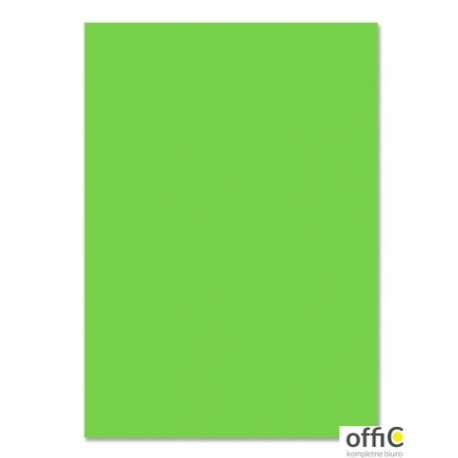 Brystol 220g, B1, jasnozielony (25szt) 3522 7010-51 Happy Color
