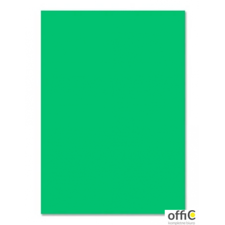 Brystol 220g, B1, zielony (25szt) 3522 7010-5 Happy Color