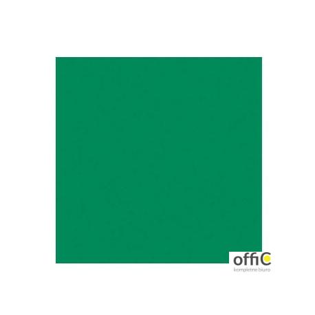 Brystol A2 170g (25) zielony HA 3517 4260-5