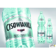 Woda CISOWIANKA 0.5l niegazowana