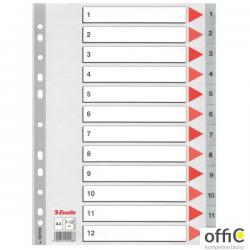 Przekładki plastikowe szare PP A4 1-12 100106 numeryczne ESSELTE