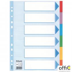 Przekładki karton A4 6 kart ESSELTE 100192 kolorowe z kartą opisową